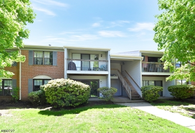 Franklin Twp. Condo/Townhouse For Sale: 51 Crabapple Ln