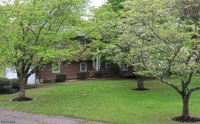 Hillsborough Twp. Single Family Home For Sale: 356 Woods Rd