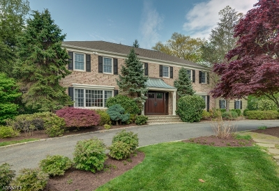 Millburn Twp. Single Family Home For Sale: 21 Hampshire Rd