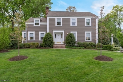 Chatham Twp Single Family Home For Sale: 18 Mitchell Avenue