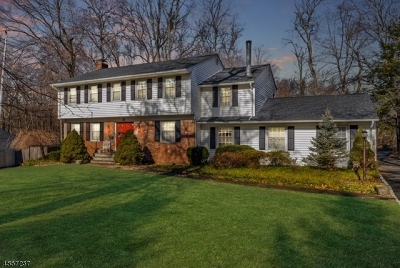 Florham Park Boro Single Family Home For Sale: 55 Townsend Dr