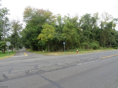 Bridgewater Twp. Residential Lots & Land For Sale: 202/206