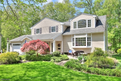 Berkeley Heights Single Family Home For Sale: 237 Chaucer Dr