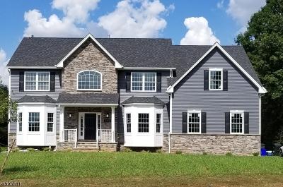 Hillsborough Twp. Single Family Home For Sale: 00 Shelburne Place
