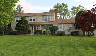 Branchburg Twp. Single Family Home For Sale: 123 Carriage Hill Way