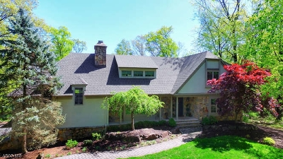 Bridgewater Twp. Single Family Home For Sale: 15 Tower Rd