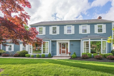 Florham Park Boro Single Family Home For Sale: 16 Village Rd