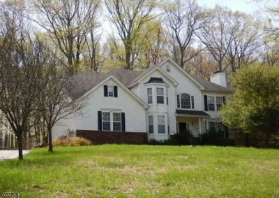 Mount Olive Twp. Single Family Home For Sale: 1 Donna Ln
