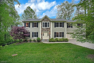 Chatham Twp Single Family Home For Sale: 28 Ormont Rd