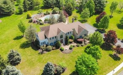 Hillsborough Twp. Single Family Home For Sale: 8 Steeple Dr