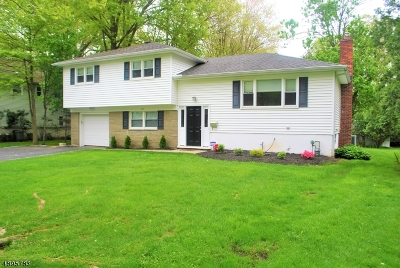 Westfield Town Single Family Home For Sale: 224 Avon Rd