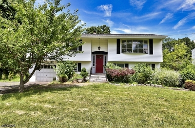 Parsippany-Troy Hills Twp. Single Family Home For Sale: 209 Edwards Rd