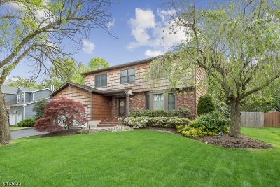 Hillsborough Twp. Single Family Home For Sale: 64 Beechwood Cir