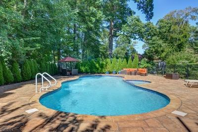 Millburn Twp. Single Family Home For Sale: 407 Hobart Ave