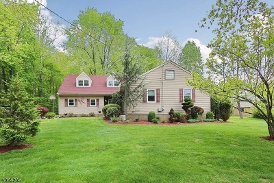 West Caldwell Twp. Single Family Home For Sale: 17 Van Ness Pl
