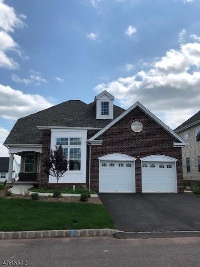 Hillsborough Twp. Single Family Home For Sale: 89 Kline Rd
