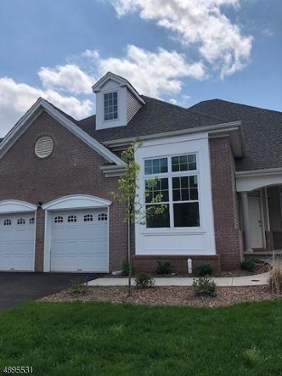 Hillsborough Twp. Single Family Home For Sale: 49 Kline Rd