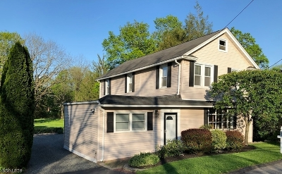 Mount Olive Twp. Single Family Home For Sale: 65 Main Rd