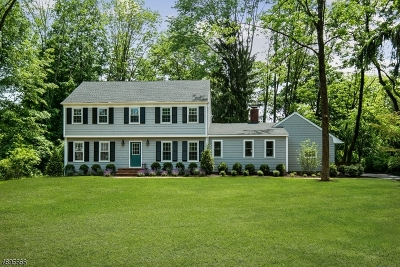 Bernards Twp. Single Family Home For Sale: 33 Apple Tree Ln