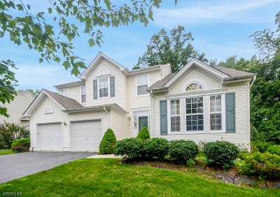 Montgomery Twp. Single Family Home For Sale: 137 York Dr
