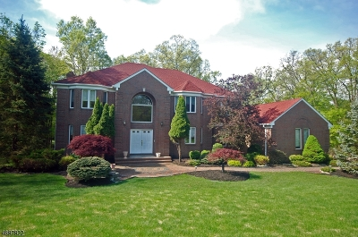 Martinsville Single Family Home For Sale: 2 Tower Rd