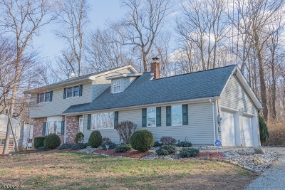 Byram Twp. Single Family Home For Sale: 16 Colby Dr