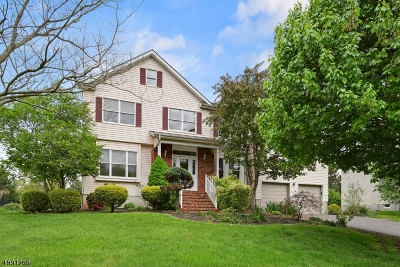 Montgomery Twp. Single Family Home For Sale: 130 Ketcham Rd