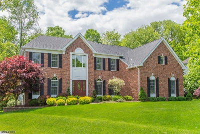 Bernards Twp. Single Family Home For Sale: 7 Paisley Ln