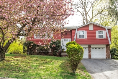 Mount Olive Twp. Single Family Home For Sale: 1 Delbar Dr