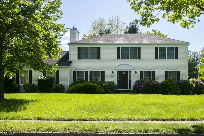 Montgomery Twp. Single Family Home For Sale: 31 Charleston Dr