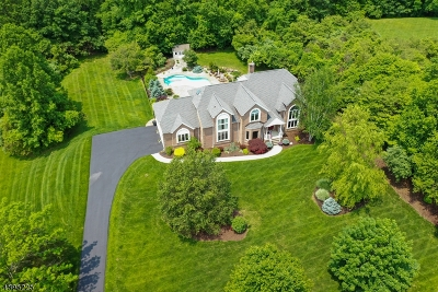 Chester Twp. NJ Single Family Home For Sale: $920,000