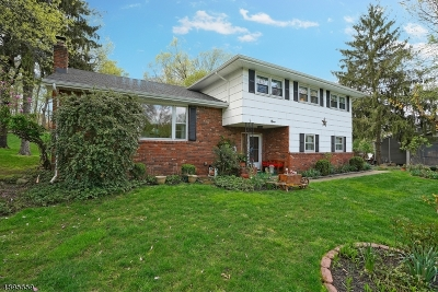 Roxbury Twp. Single Family Home For Sale: 9 Morningside Dr