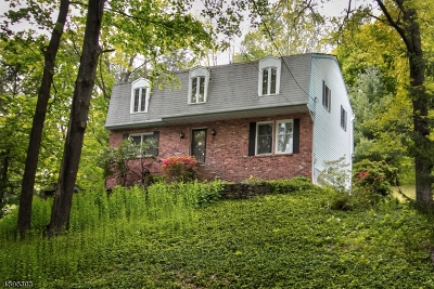 Mendham Boro, Mendham Twp. Single Family Home For Sale: 78 Woodland Rd