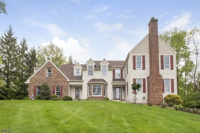 Raritan Twp. Single Family Home For Sale: 9 Greenhills Drive