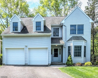 Bernardsville Boro NJ Single Family Home For Sale: $599,000