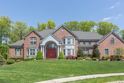 Montville Twp. Single Family Home For Sale: 14 Adams Way