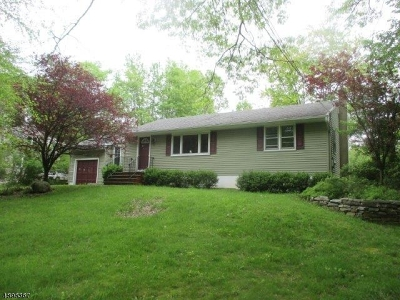 Bridgewater Twp. Single Family Home For Sale: 822 Route 202/206