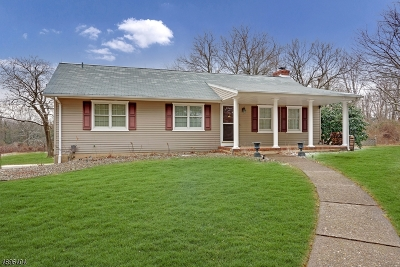 Montgomery Twp. Single Family Home For Sale: 189 Georgetown Franklin