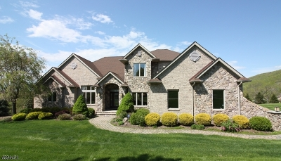 Hardyston Twp. Single Family Home For Sale: 1 Sutton Ct