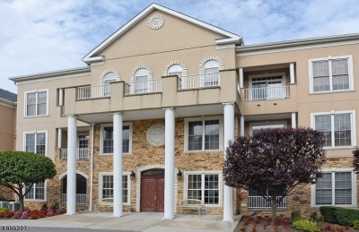 Rockaway Twp. Condo/Townhouse For Sale: 1207 Johnson Dr #1207