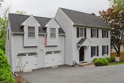 Rockaway Boro Single Family Home For Sale: 19 Addison Ave