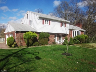 WestField Single Family Home For Sale: 1042 Prospect St