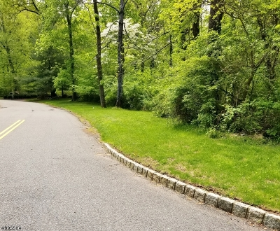 Princeton Twp. Residential Lots & Land For Sale: 21 Bogart Ct
