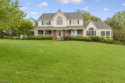 Raritan Twp. Single Family Home For Sale: 17 Starview Drive