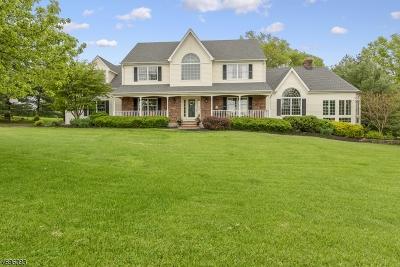 Flemington Boro, Raritan Twp. Single Family Home For Sale: 17 Starview Drive