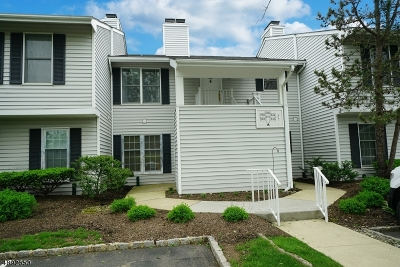 Readington Twp. Condo/Townhouse For Sale: 248 Nuthatch Ct