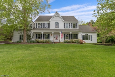 Alexandria Twp. Single Family Home For Sale: 14 Indian Creek Rd