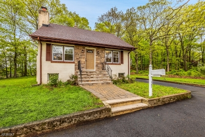 Rockaway Twp. Single Family Home For Sale: 127 Mt Pleasant Ave