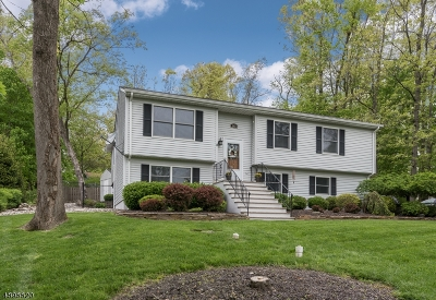 Stillwater Twp. Single Family Home For Sale: 947 Ridge Rd