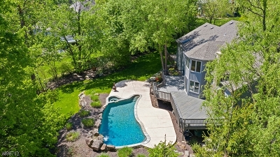 Morristown Town, Morris Twp. Single Family Home For Sale: 4 Willison Park